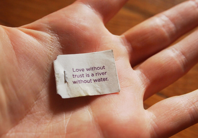 love without trust is like a river without water